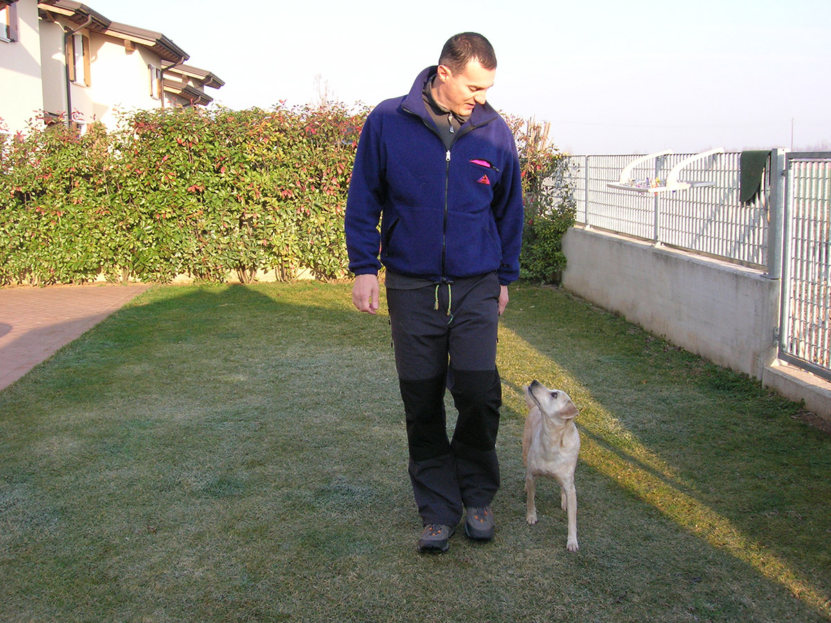 Il cane si educa o si fa educare? (1°parte)