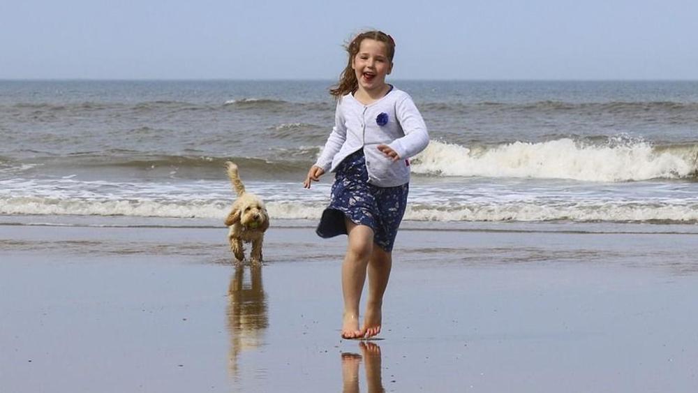 Pediatra: i cani in spiaggia fanno bene ai bambini, nessun rischio di infezioni