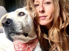 Assistenza veterinaria di base gratuita: progetto di legge in Lombardia