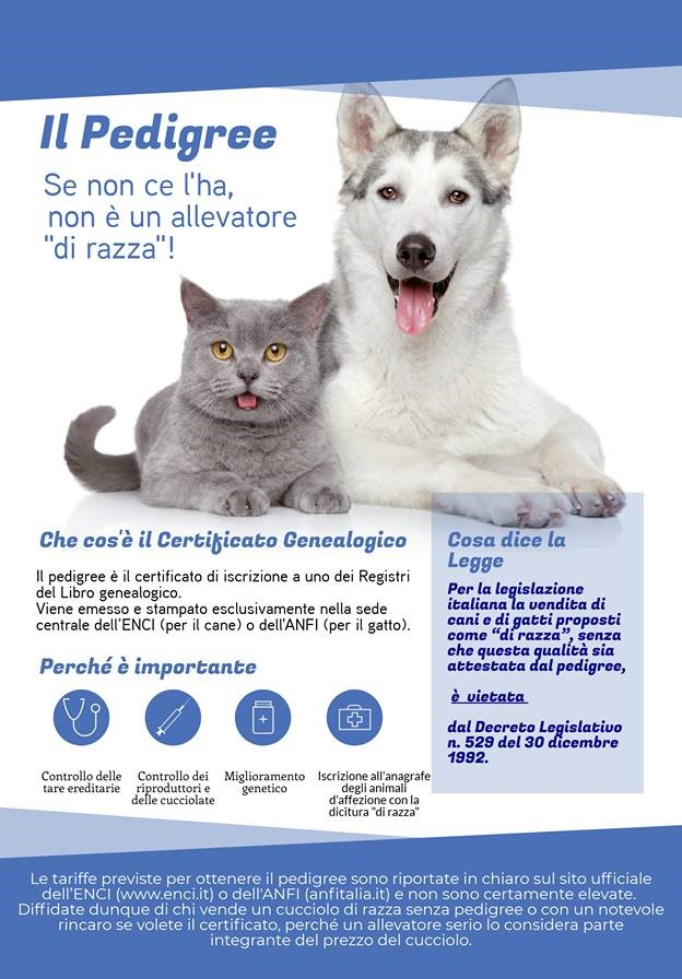 IL PEDIGREE: cos'è, a cosa serve, perchè è importante.