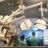 Inaugurato l'ospedale veterinario di Lodi per piccoli animali